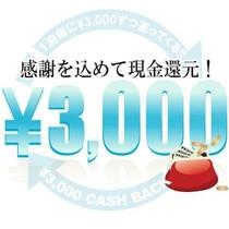 【3000円キャッシュバックプラン】