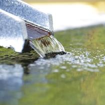 こんこんと湧き出でる、箱根湯本温泉。
