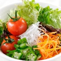 【朝食ブッフェ】新鮮ヘルシー!旬の採れたて彩りサラダ。