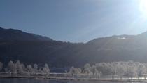 *白樺湖と霧氷の木々
