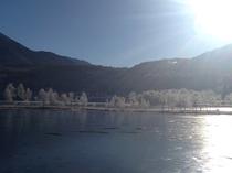 霧氷と白樺湖
