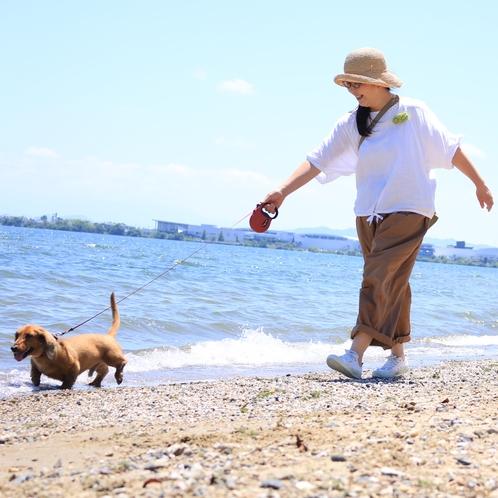 ★まの浜でご主人様もわんちゃんも湖水浴