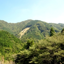 梅ヶ島 大自然でリフレッシュ♪