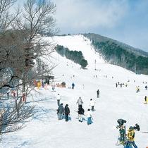 泉スキー場
