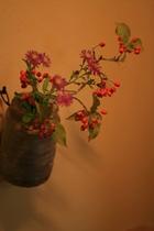 花:茶室前