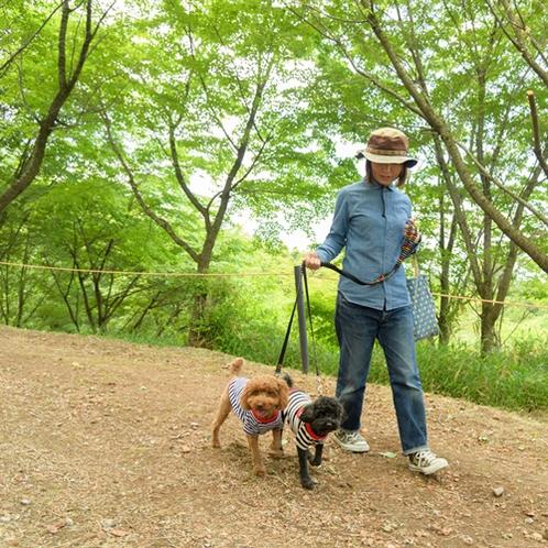 ワンちゃんと散歩を楽しめる遊歩道完備。自然の中の散歩は大変気持ち良いです。