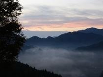 朝靄の景色