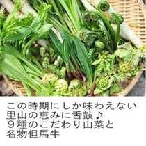 9種のこだわり山菜