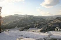 冬は一面の銀世界
