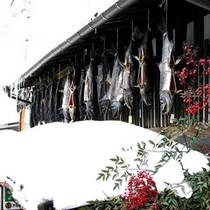 【周辺】村上鮭 冬