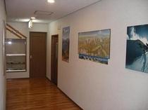 1階の廊下