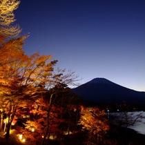 ライトアップされた紅葉と富士山