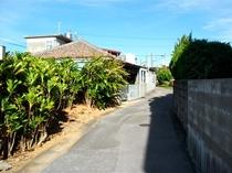 古民家並ぶ、地元の風景。