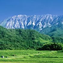 春の奥大山