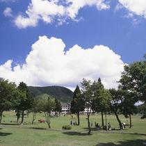新緑の奥大山鏡ヶ成