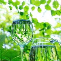 西日本最大規模のブナ原生林の恵みのおいしいお水