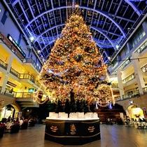 ◆クリスマスツリー