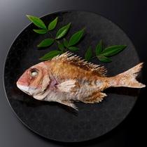 もんど岬 料理イメージ