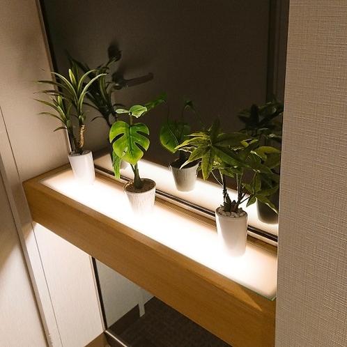 【館内】廊下やエレベーター前には小さな植物たちがお迎え♪