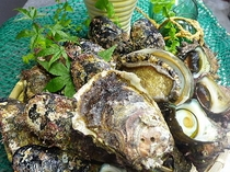 アワビ・さざえ・岩牡蠣