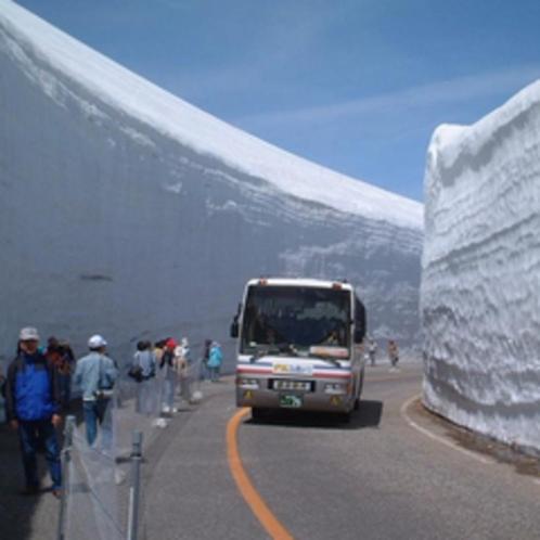 立山黒部アルペンルート【雪の大谷】