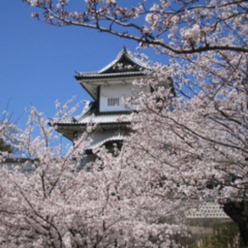 金沢城公園(石川門・桜)
