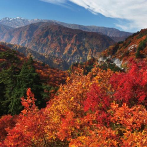 白山白川郷ホワイトロード(旧:白山スーパー林道)