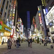 新宿の中心部に位置する閑静な佇まいのホテルです。