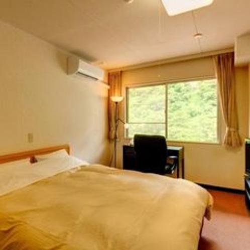 客室 山側 洋室(クイーン×1ベッド)