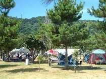 指宿エコキャンプ場