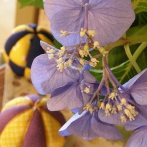 【初夏】 初夏の玄関や館内には紫陽花も。。