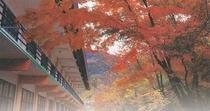 ホテルの裏山「城山」の紅葉