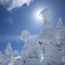 *【写真家】横手山のスノーモンスター。晴れていれば日本海まで見えることも!