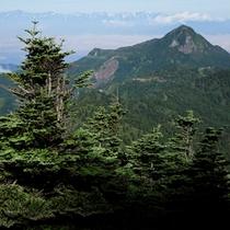 *【周辺(夏)】周辺にはトレッキングコースも多数あり、志賀高原の雄大な自然をお楽しみいただけます。