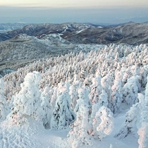 *横手山のスノーモンスター/志賀高原の冬の風物詩!日本有数の樹氷群がお客様をお待ちしております!