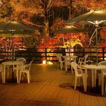 ◆バーから見える紅葉の景色◆