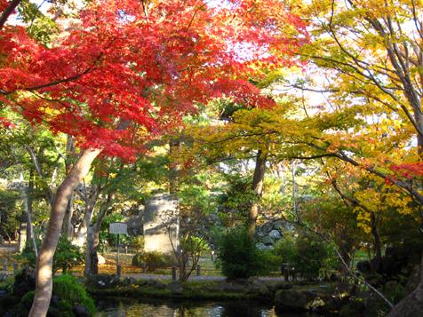 懐古園 紅葉