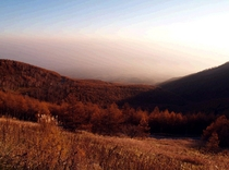 高峰高原 紅葉