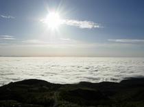 国道292号線からの雲海