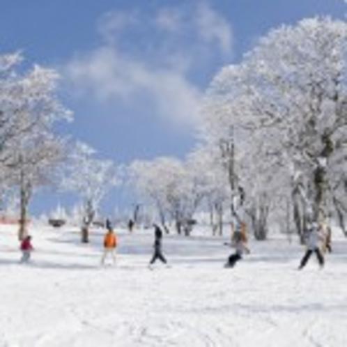 プレミアムスノー箕輪スキー場