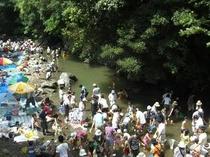 犬鳴山納涼カーニバル(金魚の放流)
