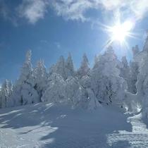 *[周辺/冬]樹氷が見られることもございます。
