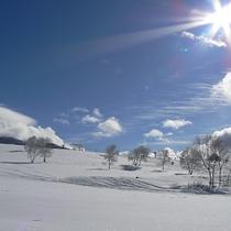 *[近隣スキー場] 峰の原スキー場(車で3分)・ 奥ダボススキー場(徒歩5分)がございます