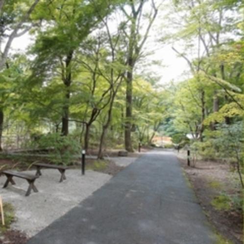 敷地内 「四季の森」入り口