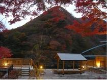 秋の夕暮れ[四季の森-足湯]