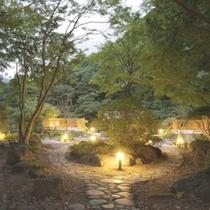 敷地内 「四季の森」