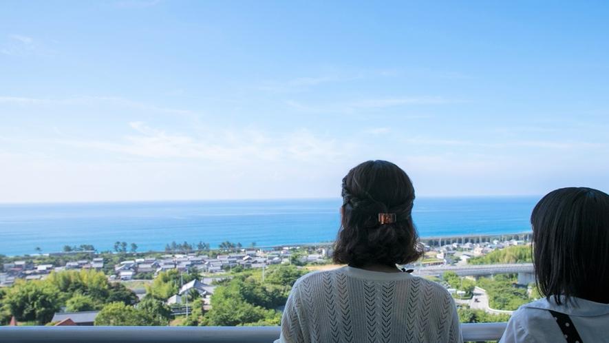 海側景観客室からは雄大な太平洋と自然豊かな景色、海岸線を走る土佐くろしお鉄道などがご覧いただけます。