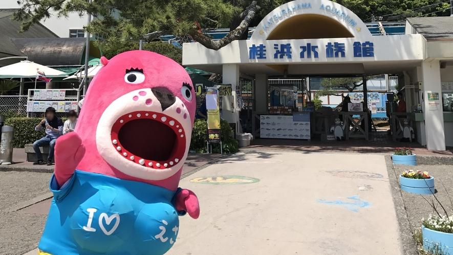 【桂浜水族館】ホテルよりお車約40分SNSで話題のハマスイマスコットキャラクターのおとどちゃん♪