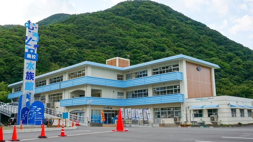 【むろと廃校水族館】ホテルよりお車約80分廃校になった小学校を改修した水族館