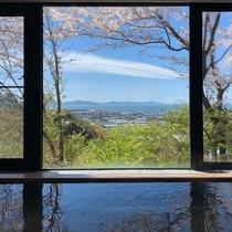 総檜風呂の桜と三河湾